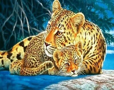 Картина по номерам 40х50см - Леопарды