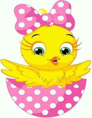 Картина по номерам PKD 72067 Цыпленок с бантиком 20*30