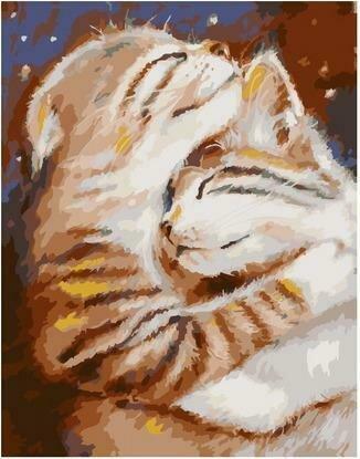 Картина по номерам PKC 76018 Мурчу тобою/ Два кота (Логинова Аннет) 30х40см