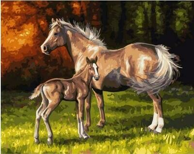 Картина по номерам GX 35040 Ветер в гривах лошадей 40*50