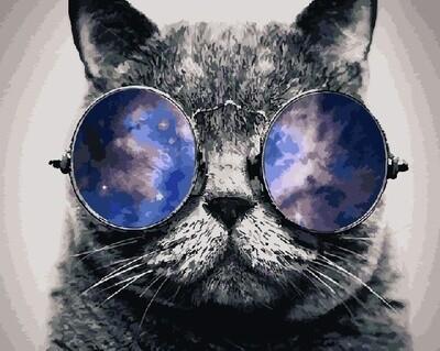 "Картина по номерам Paintboy GX21679 ""Очкастый кот"" 40х50см"