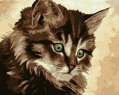 "Картина по номерам ""Милый котенок"", 40х50см, ФРЕЯ, PNB/R1 №73"