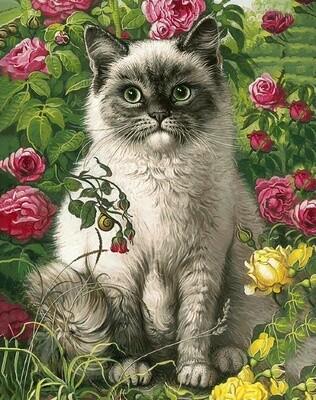 "Картина по номерам Paintboy GX21599 ""Пушистый котик"" 40х50см"