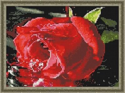 Алмазная мозаика ВанГогВоМне EQ 10273 Свежая роза 30х40 см
