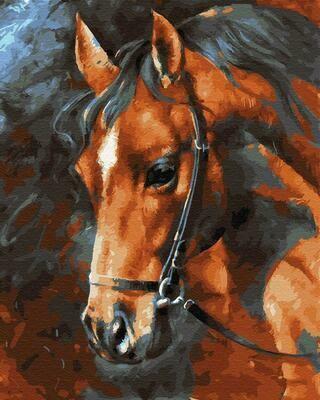 """Картины по номерам 40х50см """"Голова лошади"""" ВанГогВоМне, ZX 22991"""
