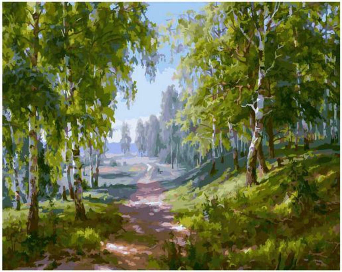 Картина по номерам Paintboy Original PK 90027 Березовая роща (Басов Сергей) 40x50см