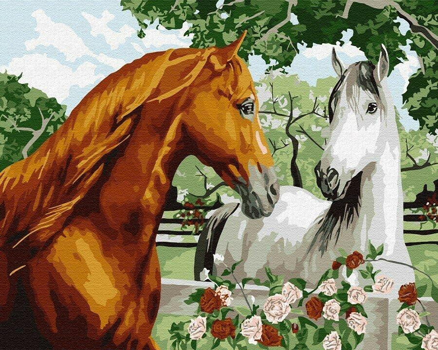 Картина по номерам Paintboy GX9040, Пара лошадей 40х50см