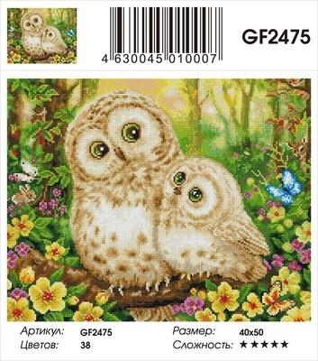 Алмазная мозаика 40x50 - GF2475