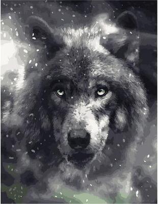 Картина по номерам GX 40297 Благородный волк 40*50