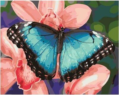 Картина по номерам GX 40329 Голубая бабочка 40*50