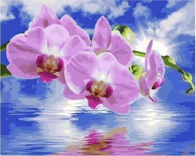 Картина по номерам GX 40035 Розовые орхидеи 40*50