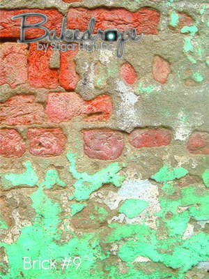 brick #9