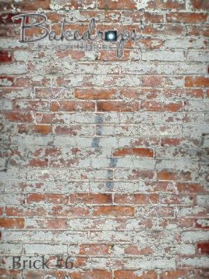 brick #6