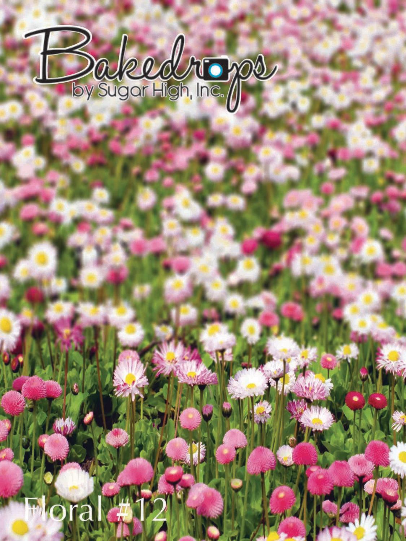 Floral #12
