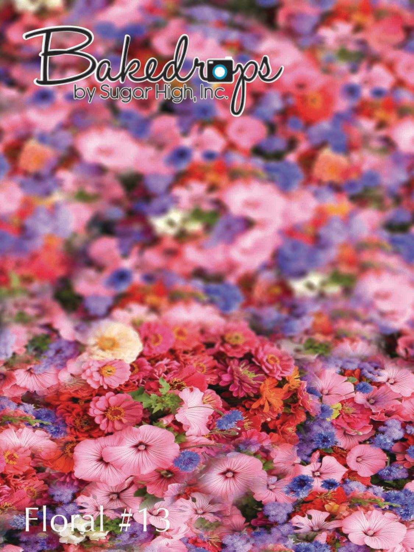 Floral #13