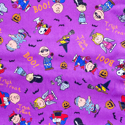 EasyFit Halloween Peanuts Charlie Brown and Snoopy Reusable Cloth Face Mask