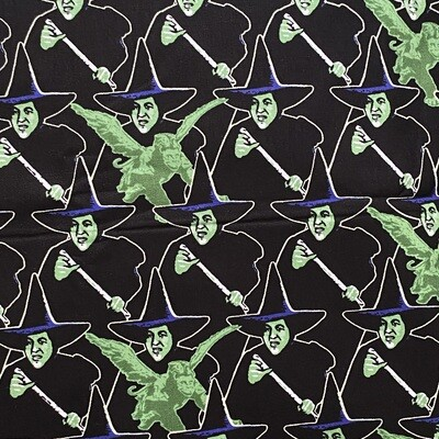EasyFit Wizard of Oz Wicked Witch of the West  Reusable Cloth Face Mask
