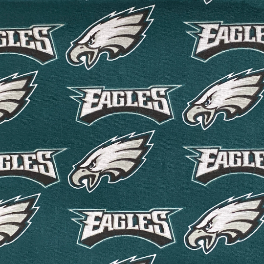 EasyFit NFL Football Philadelphia EAGLES Reusable Cloth Face Mask
