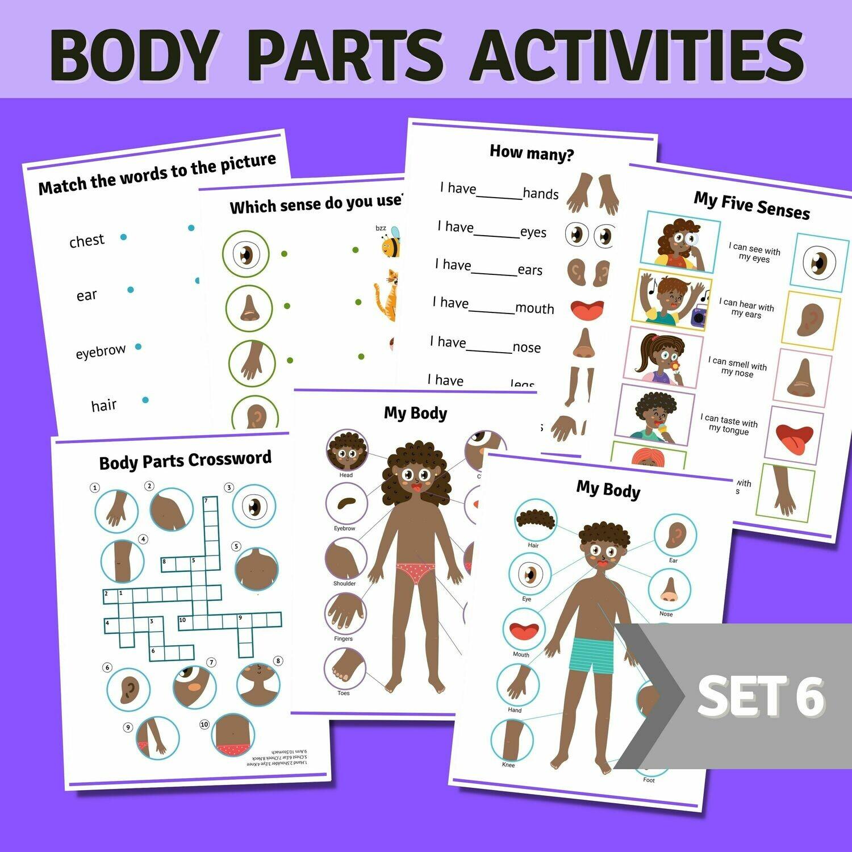 Body Parts Activities Bundle Set 6