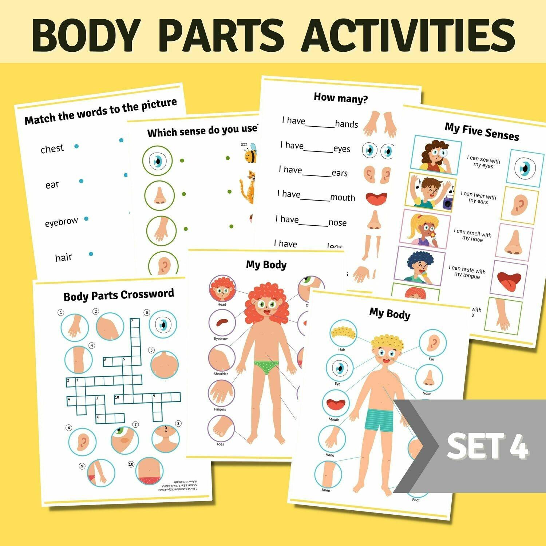Body Parts Activities Bundle Set 4