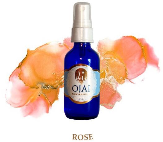 Rose Flower Spray