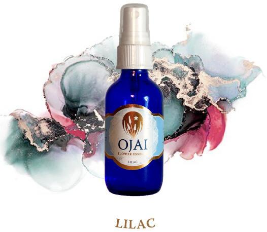 Lilac Flower Spray
