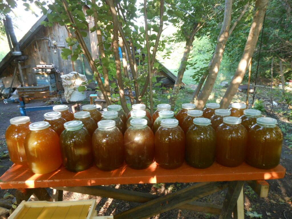 Мед с разнотравья