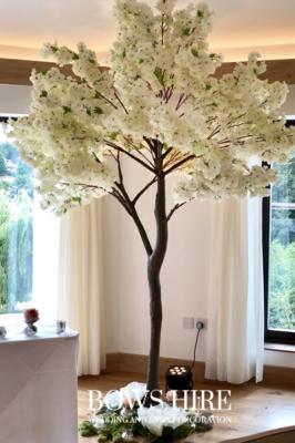 280cm Cream Blossom Trees