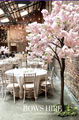 280cm Pink Blossom Trees