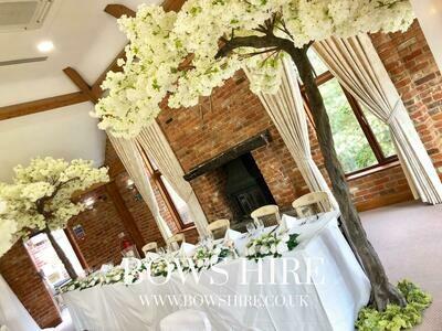 320cm Cream Blossom Canopy Trees