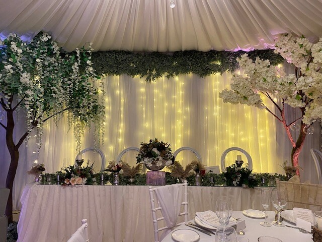 Starlight Backdrop with Eucalyptus