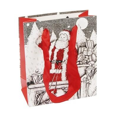 15223 Пакет подарочный новогодний с блестками ,Размер: 12*14*6 см