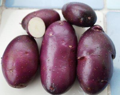 Сорт картофеля «Голубой Дунай» (Blue Danube) сорт высокоустойчив к большенству заболеваний картофеля  - (20 клубней)