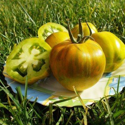 Помидоры - Green Bell Pepper - Перцевидный Зелёный