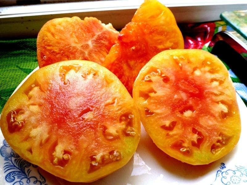 Помидоры Pineapple Вi-color — Двухцветный Ананас