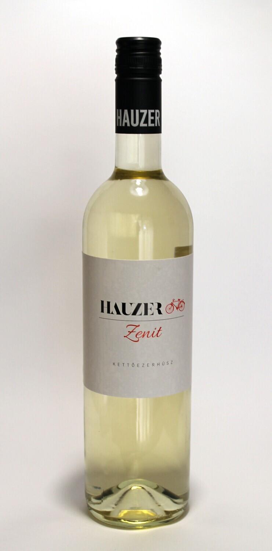 Zenit 2020