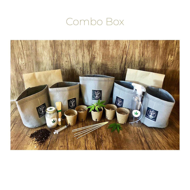 Combo Box - Starter Kit + Seedling Box