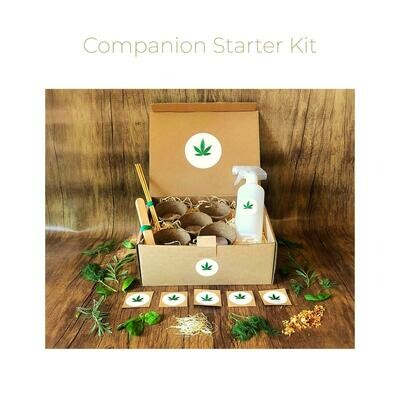 The Companion Starter Kit