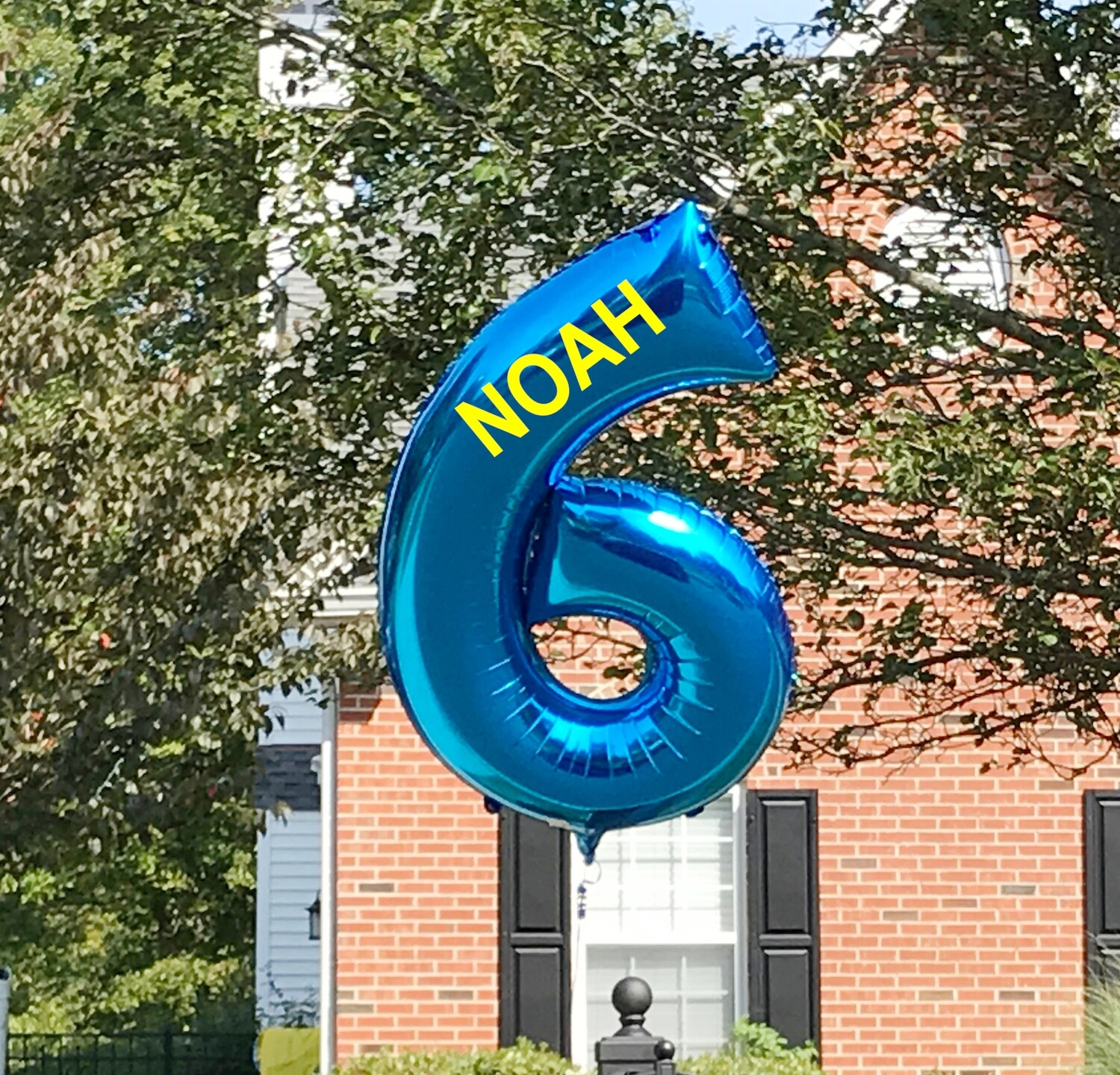 Birthday single digit number hand-held, or hoverer, centerpiece or pool float
