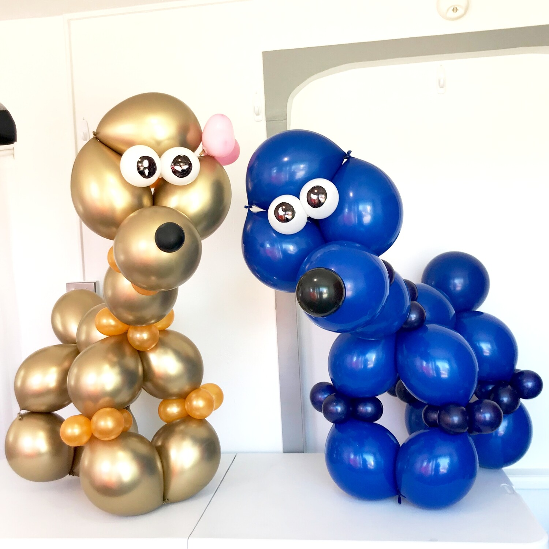 Giant balloon dog poodle, great birthday balloon gift