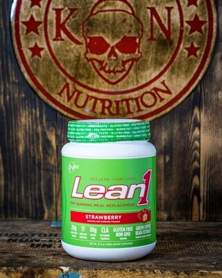 N53, Lean1, Fat Burning, Meal Replacement, 15 Serv,  Strawberry
