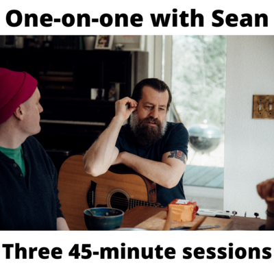 One-on-one training session w/ Sean (Three 45-minute Sessions)