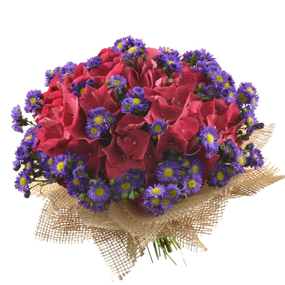 Kytica s tmavoružovou hortenziou