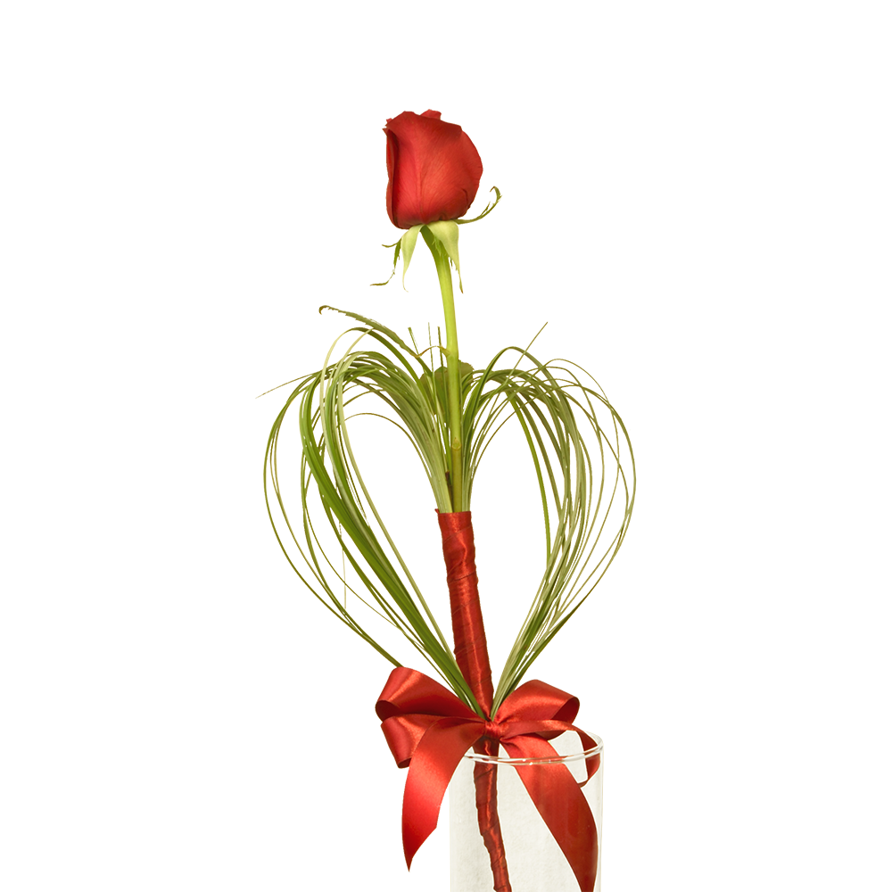 Červená ruža so srdcom