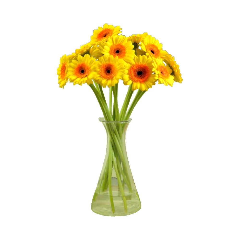 Žlté gerbery
