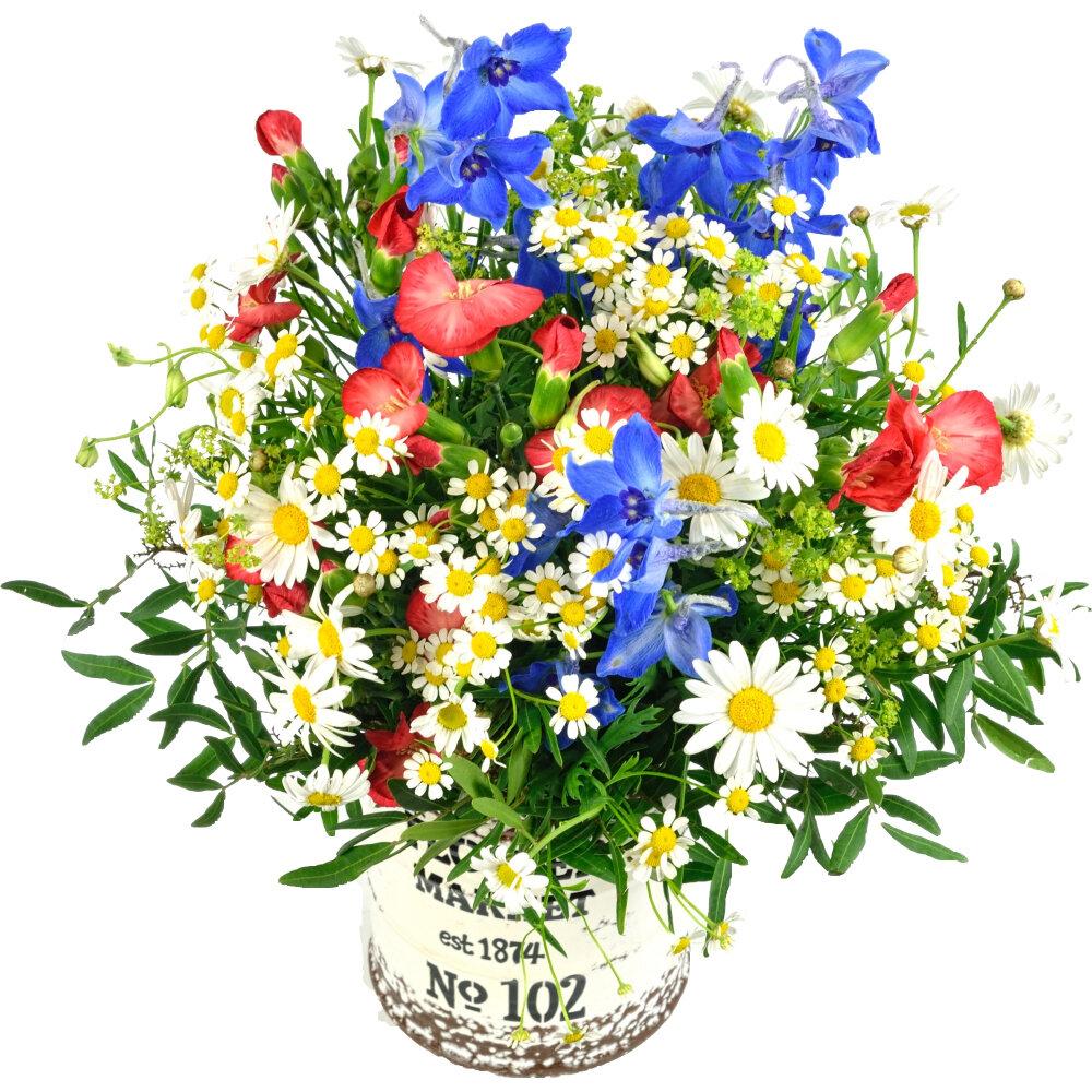 Júnová kytica lúčnych kvetov