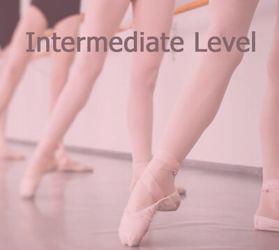Book INTERMEDIATE LEVEL (18.30 - 19.45)