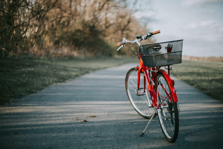 Bike rent - 2 days