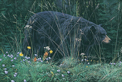 Bear and Blossoms
