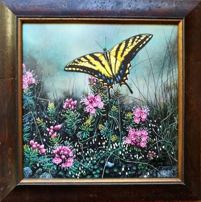 Swallowtail Butterfly - Framed
